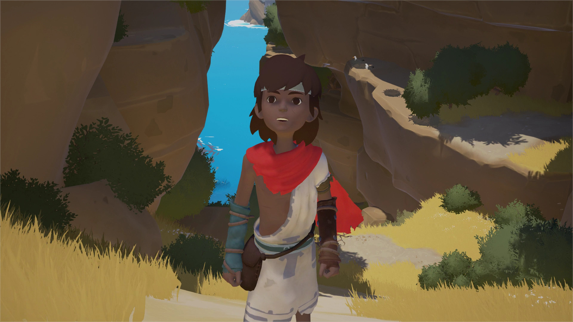 Find the best laptop for RiME