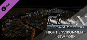 FSX Steam Edition: Night Environment: New York Add-On