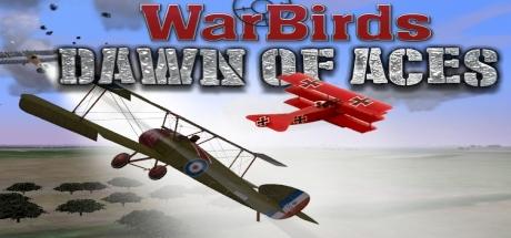 WarBirds Dawn of Aces, World War I Air Combat