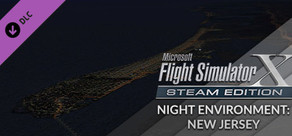 FSX Steam Edition - Night Environment: New Jersey Add-On
