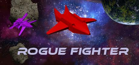 Rogue Fighter