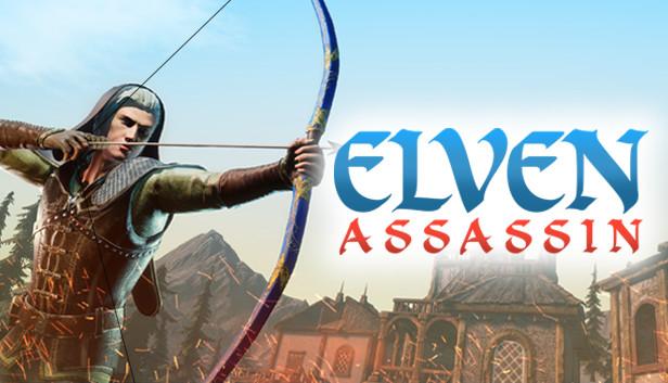 Image result for elven assassin