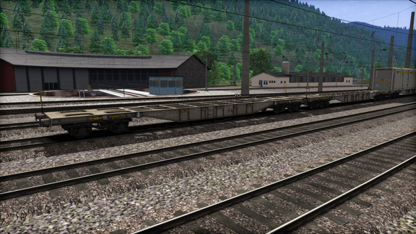 скриншот TS Marketplace: ÖBB Sgns Container Wagon Pack 5