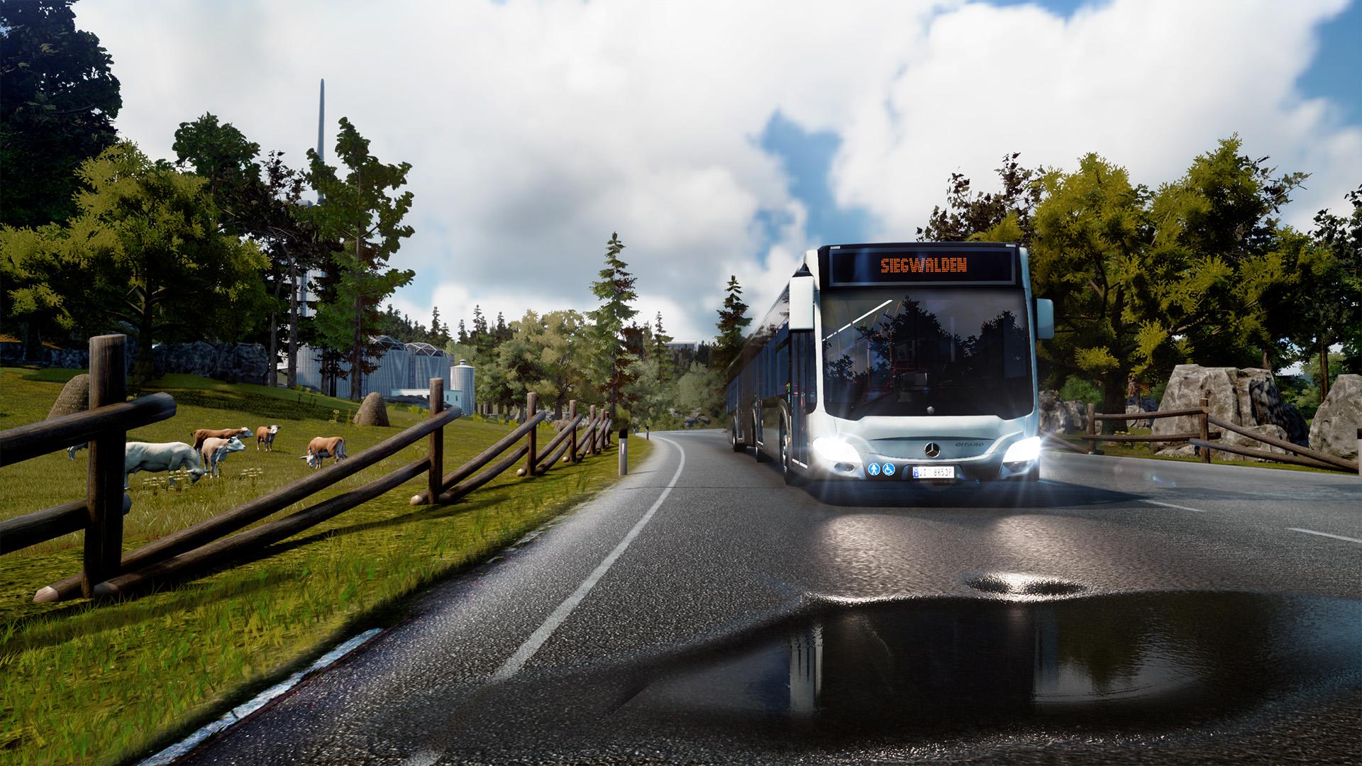 nomer-voditelya-bus-simulyator