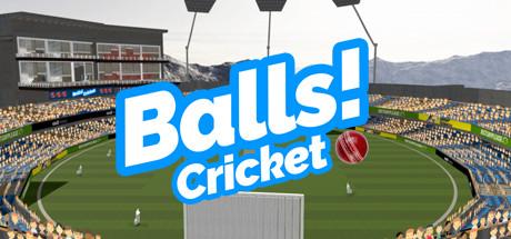 Teaser image for Balls! Virtual Reality Cricket