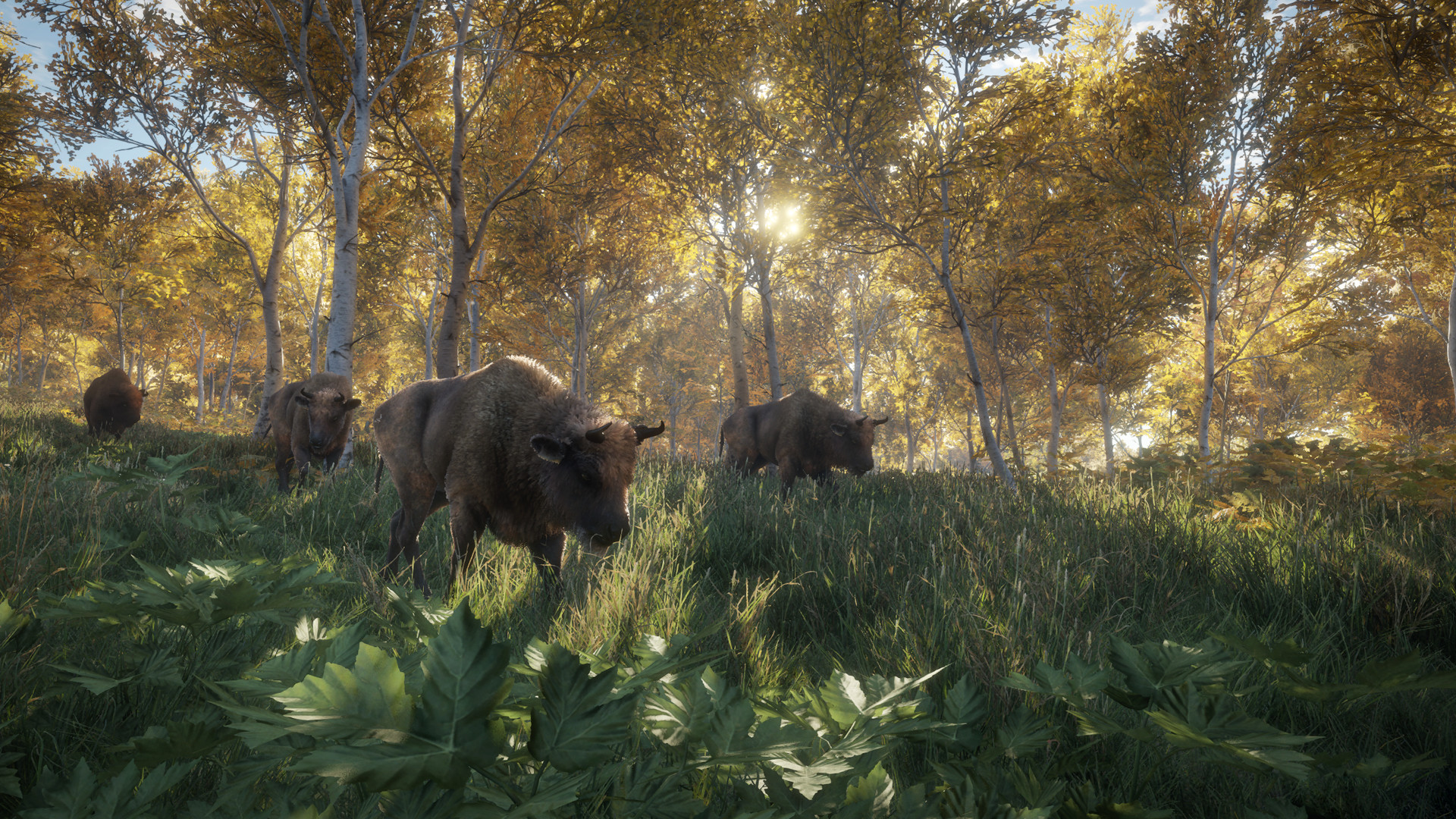 theHunter: Call of the Wild™ on Steam
