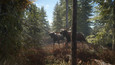 theHunter: Call of the Wild picture22