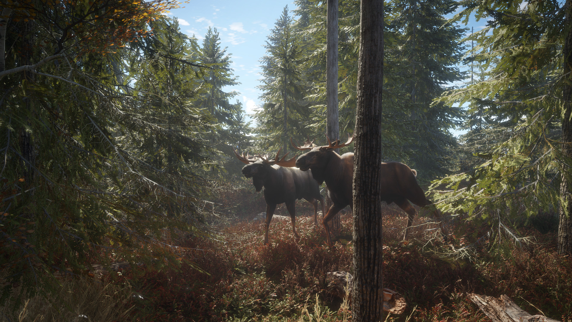 theHunter: Call of the Wild [2017|Rus|Eng|Multi10]