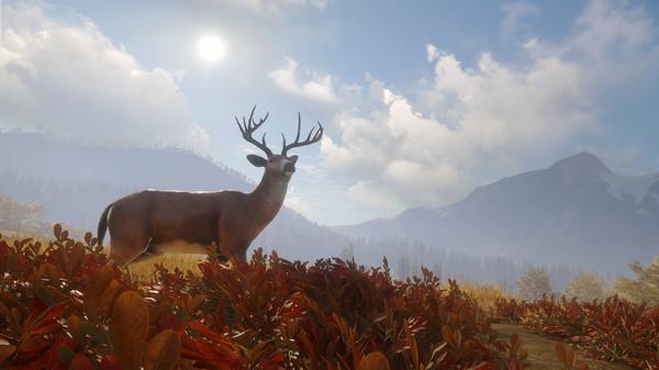 Capture d'écran n°8 du Jeu theHunter: Call of the Wild™