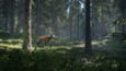 theHunter: Call of the Wild picture7