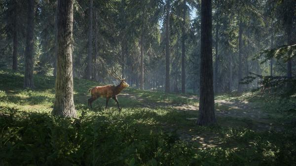 theHunter: Call of the Wild [v 1.19 + DLCs] Full Version