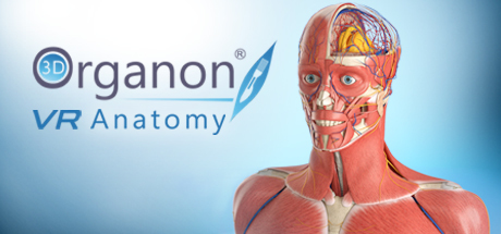 3D Organon VR Anatomy