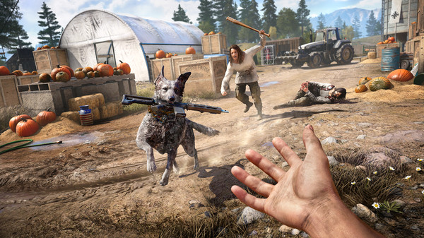 Far Cry 5 Free Steam Key 4