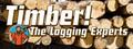 Timber! The Logging Experts Screenshot Gameplay