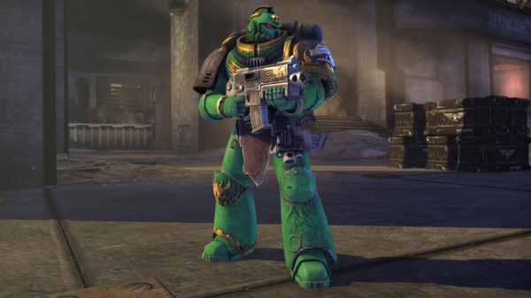 Warhammer 40,000: Space Marine - Salamanders Veteran Armour Set (DLC)
