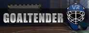 Goaltender VR