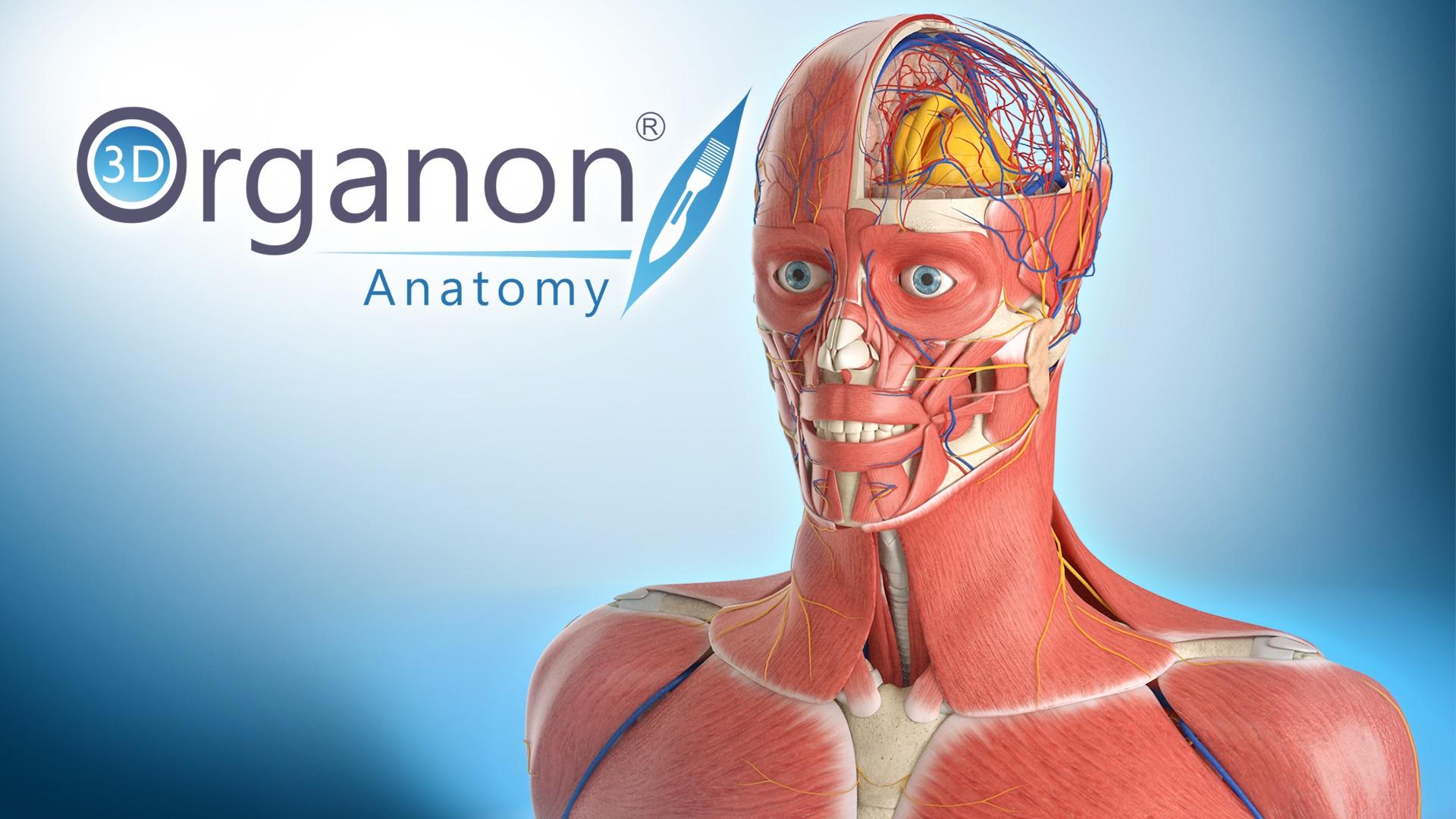 Horror Anatomy Skin Suit Miifotos