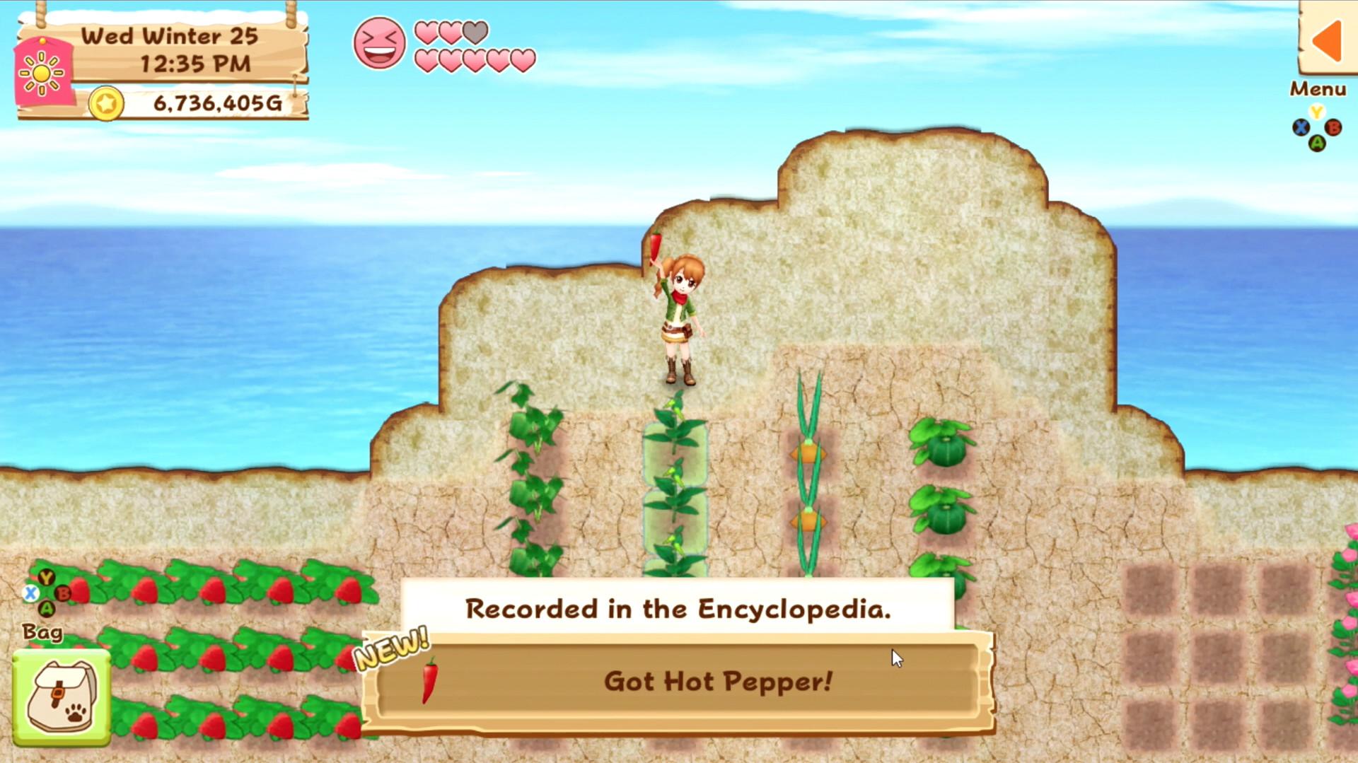 Ebook Panduan Game Harvest Moon Back To Nature