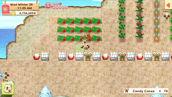Harvest Moon: Light of Hope Screenshot 3