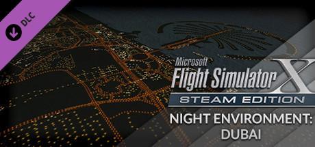 FSX Steam Edition: Night Environment: Dubai Add-On