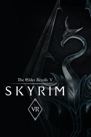 The Elder Scrolls V: Skyrim VR poster image on Steam Backlog