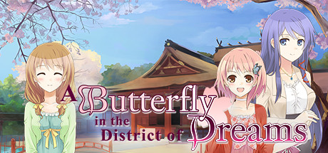 A Butterfly in the District of Dreams cover art