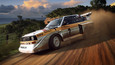 DiRT Rally 2.0 picture13