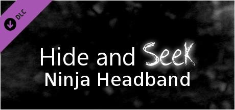 Hide and Seek - Ninja Headband