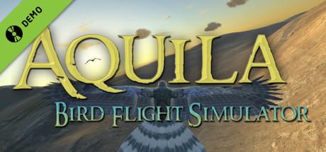 Aquila Bird Flight Simulator Demo