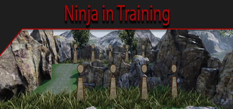 Ninja in Training