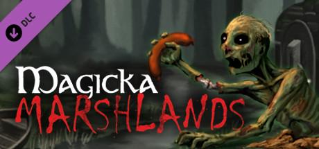Купить Magicka: Marshlands (DLC)