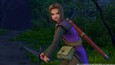 DRAGON QUEST XI: Echoes of an Elusive Age picture3