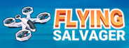 Flying Salvager capsule logo