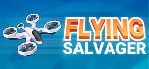 Flying Salvager cover art
