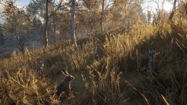 theHunter: Call of the Wild - New Species 2018 - CODEX (v1.9 & ALL DLC)