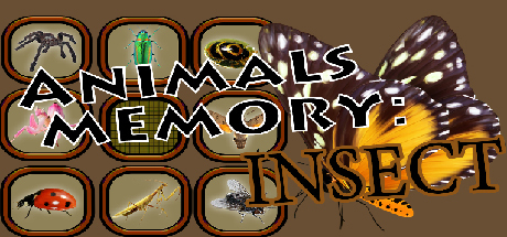 Animals Memory Insect