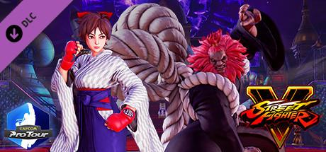 Street Fighter V - Capcom Pro Tour: 2018 Premier Pass cover art