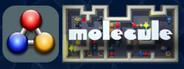 Molecule - a chemical challenge