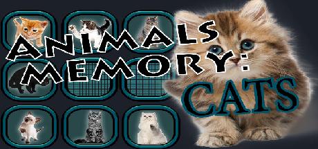 Animals Memory Cats