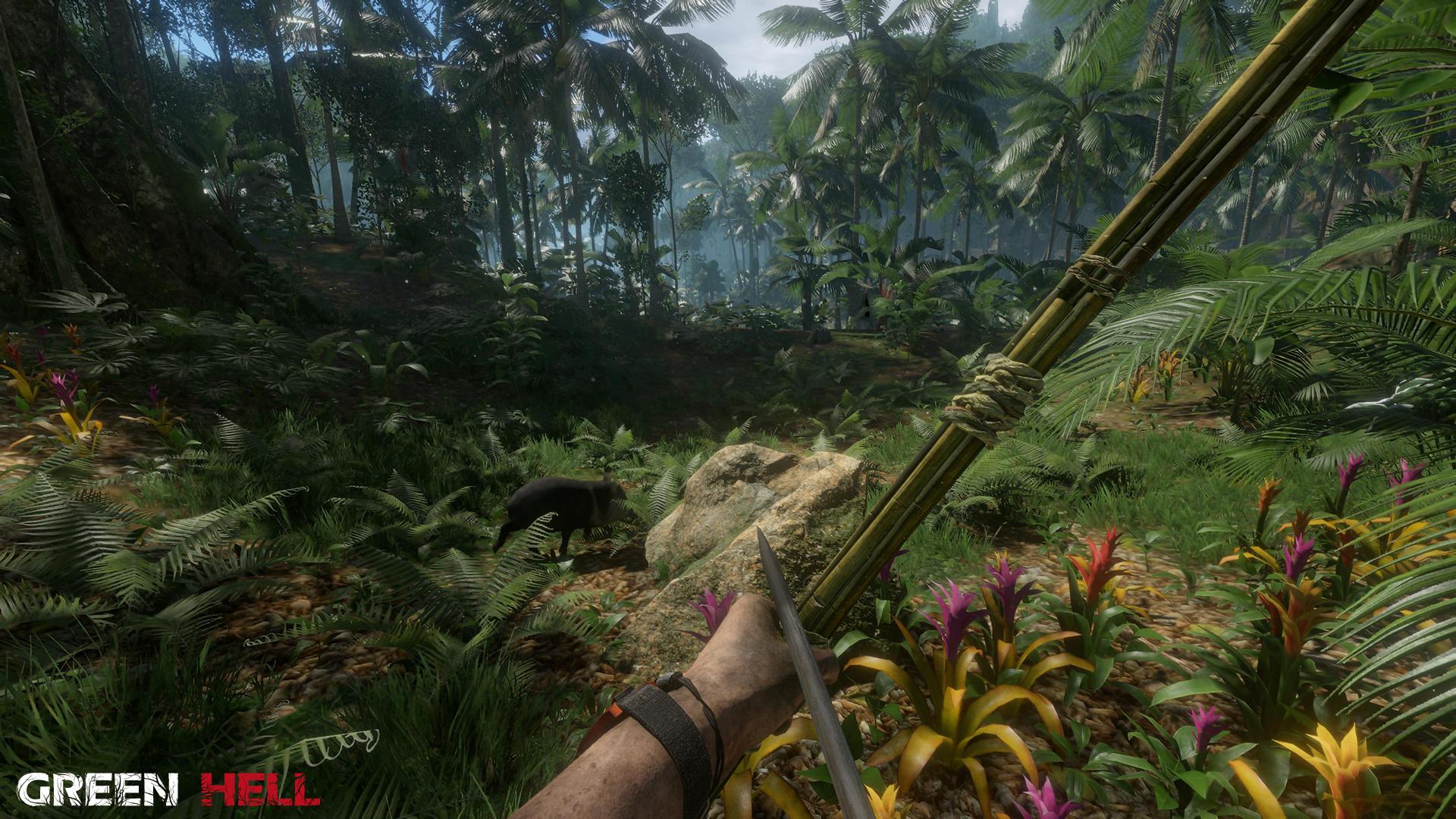 Green Hell Screenshot 3
