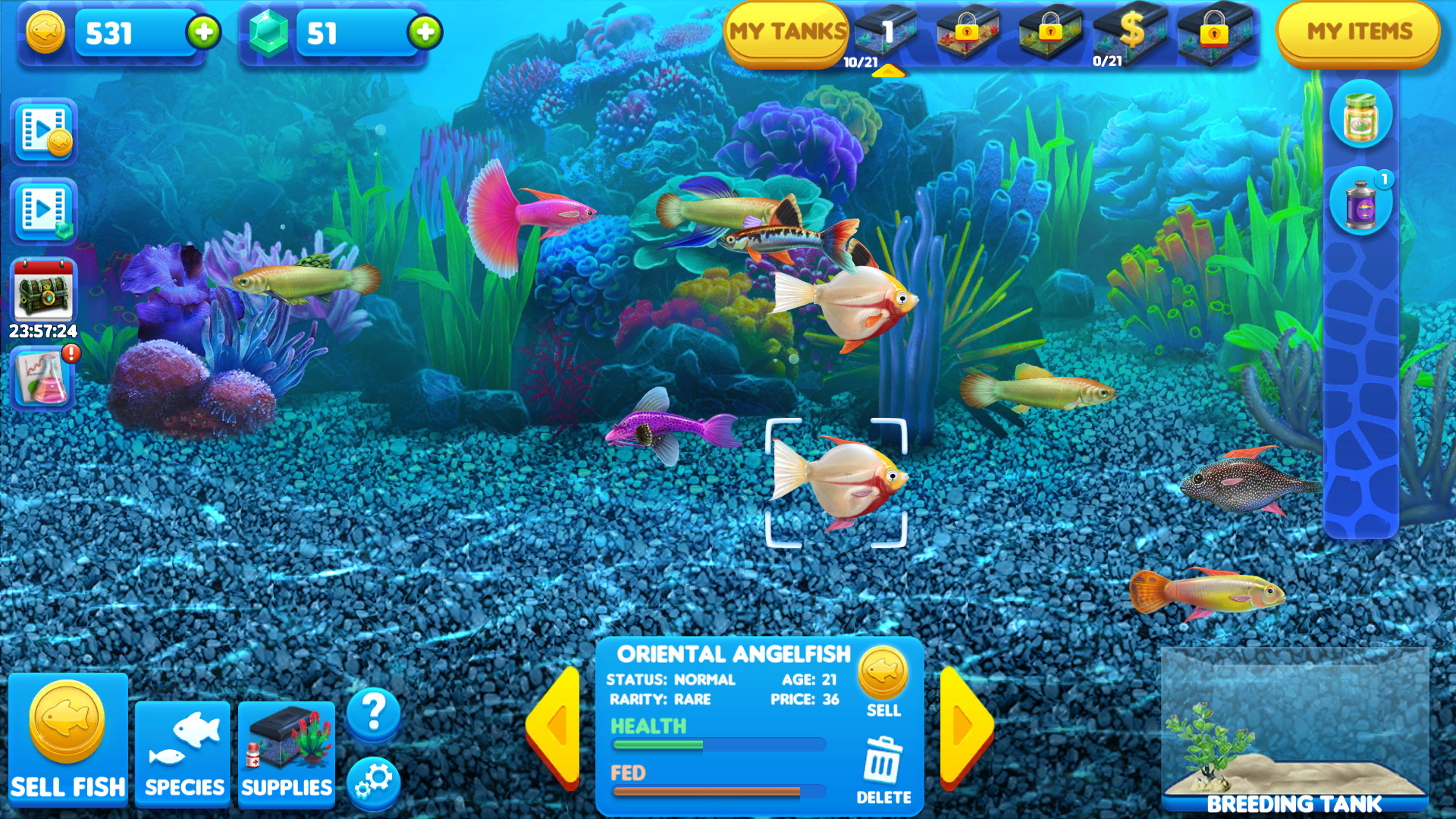 fishy game free download mac