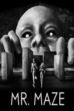 Mr. Maze poster image on Steam Backlog