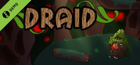 Draid Demo