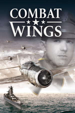 Combat Wings poster image on Steam Backlog