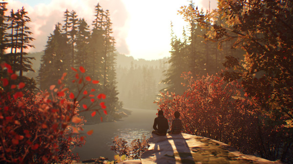 Life is Strange 2 - Arcadia Bay Patches DLC