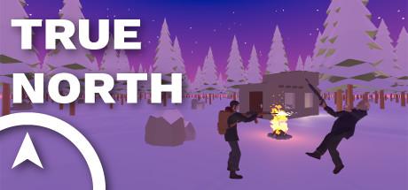 Купить True North