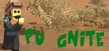 PUGNite cover art