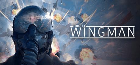 Project Wingman on Steam Backlog