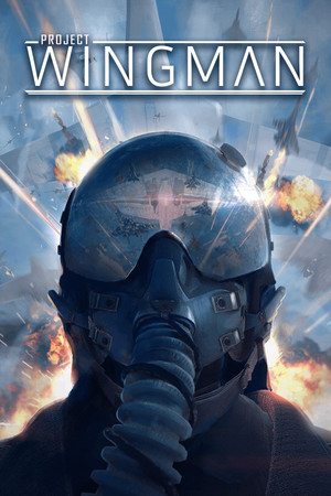 Project Wingman poster image on Steam Backlog