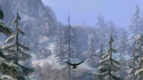 Guild Wars: Eye of the North® video
